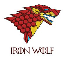 HOUSE STARK - IRON WOLF Photographic Print