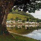 Village by the Loch by Lynn Bolt