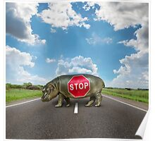 figure of a young hippo on deserted road Poster