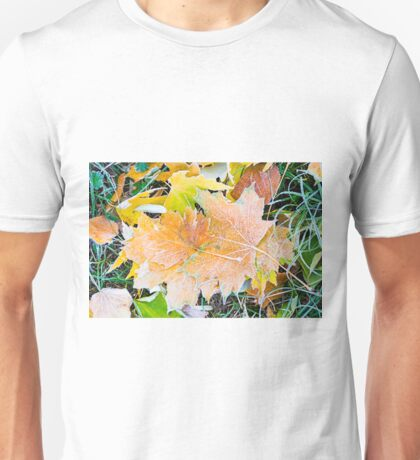 Autumn leaves as a background Unisex T-Shirt