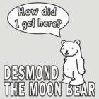 Desmond the Moon Bear by Frans Hoorn