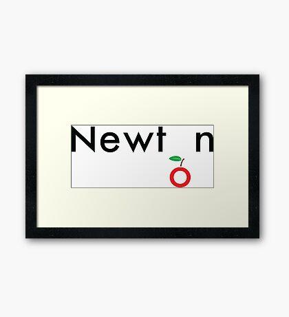 Isaac Newton Framed Print