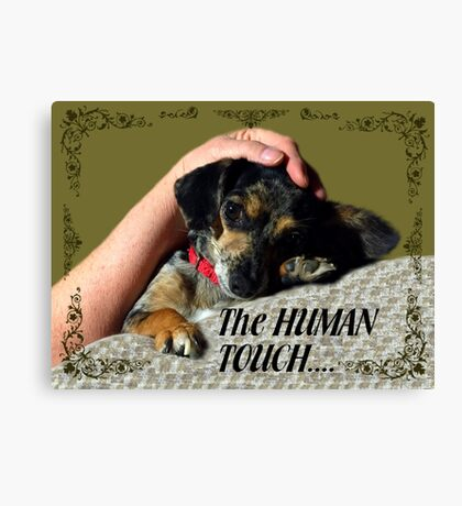 The Human Touch Canvas Print
