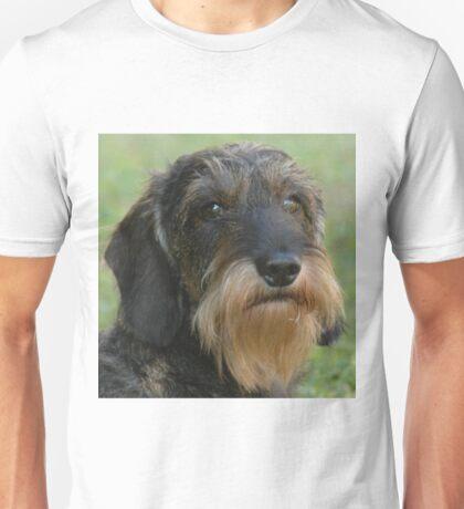 wirehaired dachshund Unisex T-Shirt