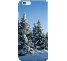 Snow Covered Trees/ Winter Fern iPhone Case/Skin