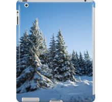 Snow Covered Trees/ Winter Fern iPad Case/Skin