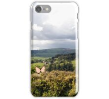 varied Species of Butterflies in an Irish Meadow iPhone Case/Skin