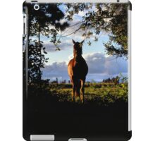 Equine, Evergreen Montana iPad Case/Skin
