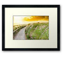 wild flowers along a cliff walk path Framed Print