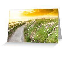 wild flowers along a cliff walk path Greeting Card