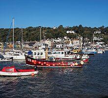 Lyme Regis Harbour - October by Susie Peek