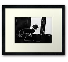 Watchful Boris Framed Print
