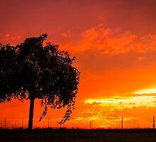 Burning sky... #002 by Qnita