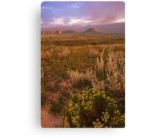 Prairie Sunrise N. Co. Canvas Print