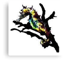 Seahorse piece. Canvas Print
