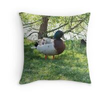 duck in the farm Throw Pillow