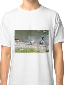 duck on the lake Classic T-Shirt