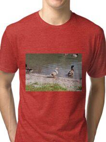 duck on the lake Tri-blend T-Shirt