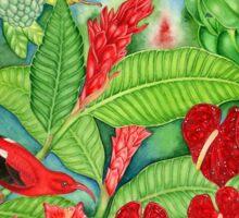 Red Iiwi Garden Sticker