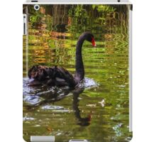 Black Swan. iPad Case/Skin