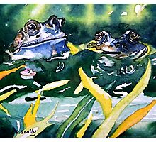 Looks ok to me - frog blue Photographic Print