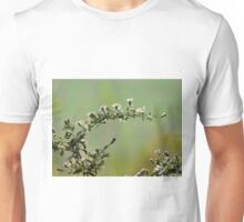 Calico Asters Unisex T-Shirt