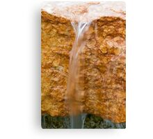 fountain gushing Canvas Print