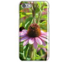 Lavender Coneflower iPhone Case/Skin