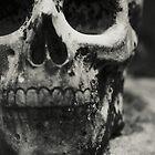 Skull by DonatellaLoi