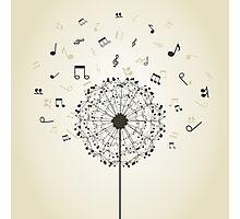 Music a dandelion Photographic Print