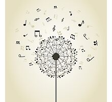 Music a dandelion Photographic Print