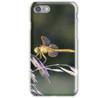 Yellow Dragon MN iPhone Case/Skin