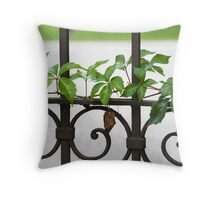 gate with ivy Throw Pillow
