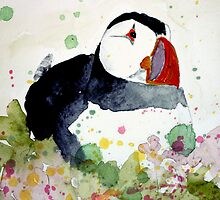 puffin on the ledge by Claudia Dingle