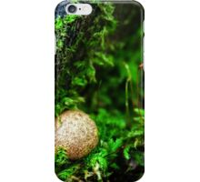 stay there, they won't see you... iPhone Case/Skin