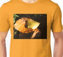 Russet Autumn Leaves - Close-up Unisex T-Shirt