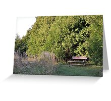 Evergreen Bench Greeting Card