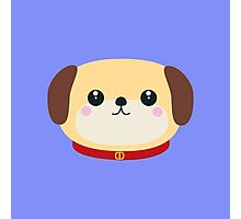Cute puppy Dog with red collar Photographic Print
