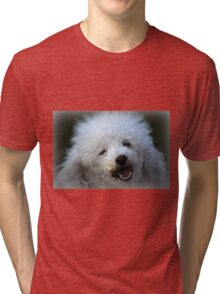 cute dog poodle Tri-blend T-Shirt