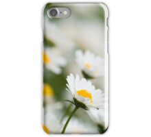 Beautiful White Daisies  iPhone Case/Skin