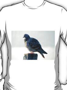bird on lake T-Shirt