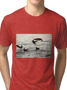 seagull on lake Tri-blend T-Shirt