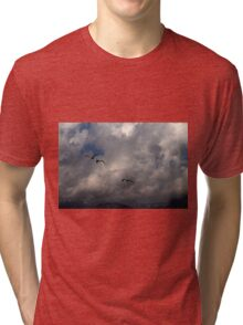 seagull fly in the sky Tri-blend T-Shirt