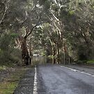 The Gums by Dean Wiles