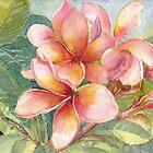 Pink Frangipani flowers id1190909 by Almondtree