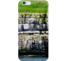 Puffin Island iPhone Case/Skin