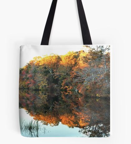 Lakeside, South County Tote Bag