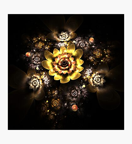 Golden roses Photographic Print