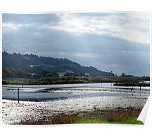 Seaton Estuary.........East Devon nature Reserve Poster
