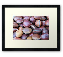 African seeds Framed Print